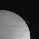 Sun, prominence, 11 Febbraio 2020,                                Ennio Rainaldi