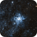 TARANTULA NEBULA (NGC 2070),                                Roberto Luiz Spenthof