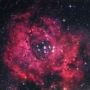 NGC 2237 Rosettennebel,                                Hakan Midik