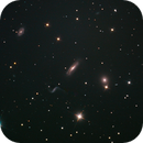 Hickson 44 (ARP316) Galactic Cluster in Leo,                                Gianni Cerrato