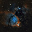 Fish Head Nebula,                                Alex Pinkin