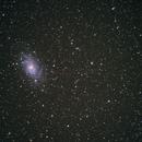 First M33,                                Olivier