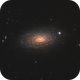 Sunflower Galaxy,                                drivingcat