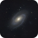 M81 Bode's Galaxy,                                NuclearRoy