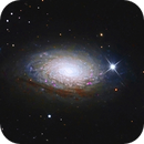 Messier 63, Sunflower Galaxie,                                Big_Dipper