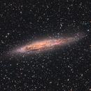 NGC 4945,                                Terry Robison