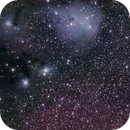 IC 446 region,                                mwil298