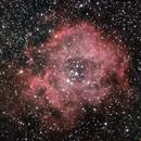 The Rosette Nebula -  NGC 2244 -  Caldwell 49,                                anatiss