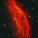 California Nebula,                                John Pungello