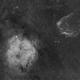 IC 1396 and SH2-129 @ DSLR - H-Alpha,                                Wolfgang Zimmermann