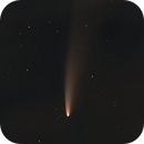 Comet Neowise,                                Carastro