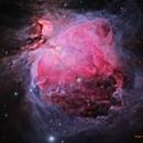 M42 (Orion Nebula) [RGB+NB],                                Dean Carr