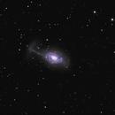 NGC4651 the umbrella galaxy,                                Caroline Berger