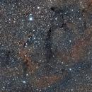 IC 1396 - Elephant's Trunk Nebula,                                Luis Martinez