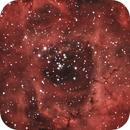 Caldwell 49 - Rosette Nebula,                                milki