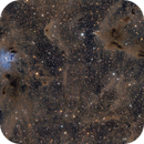 NGC 7023 Iris Nebula,                                Andrea Pistocchin...