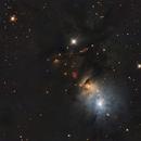 NGC1333,                                Albert van Duin