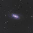 NGC 2903 in Leo,                                wannaberocker_x