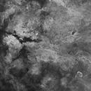 Starless Gamma Cygni Region (StarNet PI),                                Scott Tucker