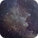 IC 2118 Witch Head Nebula,                                Riccardo A. Ballerini