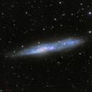 NGC 55 and IC 1537,                                Miles Zhou