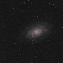 Messier 33 - Triangulum Galaxy,                                Arno Rottal