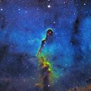 Elephant Trunk Nebula IC1396,                                Brian Meyerberg