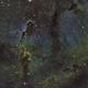 IC 1396 Elephant's Trunk,                                tcpalmer