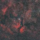 IC 1318,                                Peter Markert
