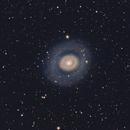 Bull's eye(M94),                                Wei Li
