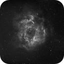 NGC 2239 Rosette Nebular HA,                                George