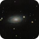 M63 Sunflower galaxy with C6 / Canon 60D mod + Celestron C6 XLT SC / SWEQ-M35 / 1600iso new trial NO DRIZZLE,                                patrick cartou