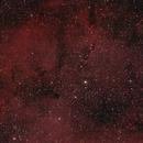 IC1396 Elephant Trunk Nebula Duoband O3+Ha,                                Mathias Radl