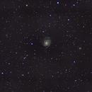 M101 Wide Field,                                Rick Burke