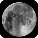 Worm moon,                                Param P Sharma