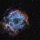 Rosette Nebula,                                Daniel Lamothe