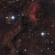 IC 5067 Pelican,                                ju